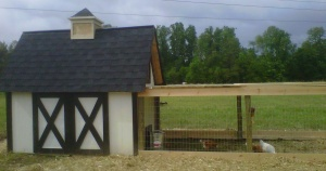 The original coop at the farm - made from pallets and shipping crate wood