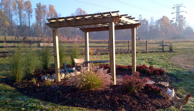 Early Fall 2011 - The pergola up at the farm, and the first of the landscaping plants are installed
