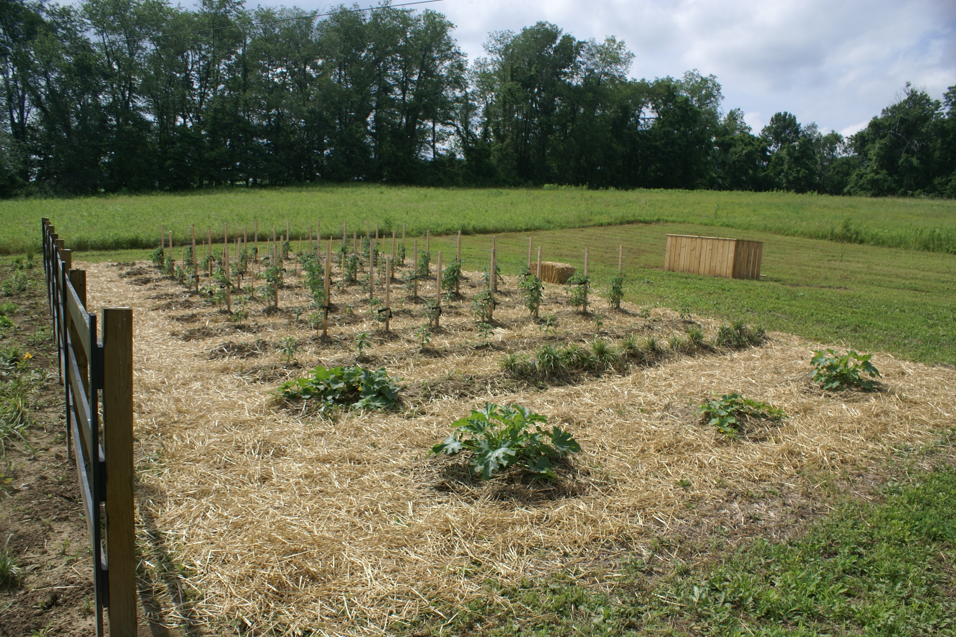 Delightful This Is A Photo Of Our First Raised Row Bed We Installed On The Farm. Our  Original Garden Was 20 X 40. We Were Able To Have It All Planted In About  ...