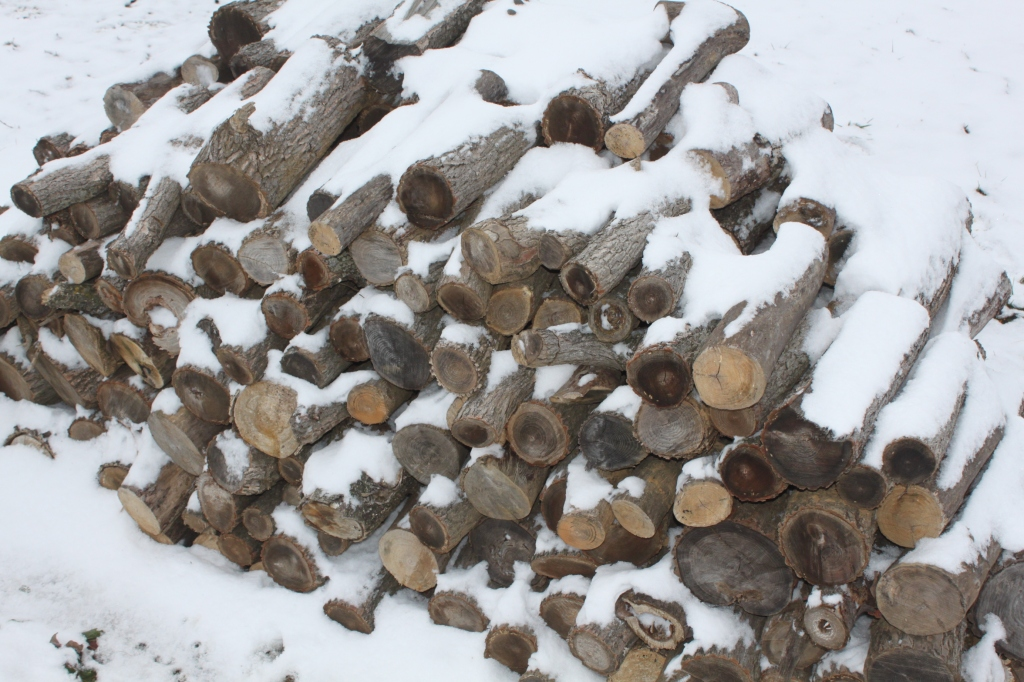 The wood pile is covered in snow...good thing we have plenty stored dry for emergencies!