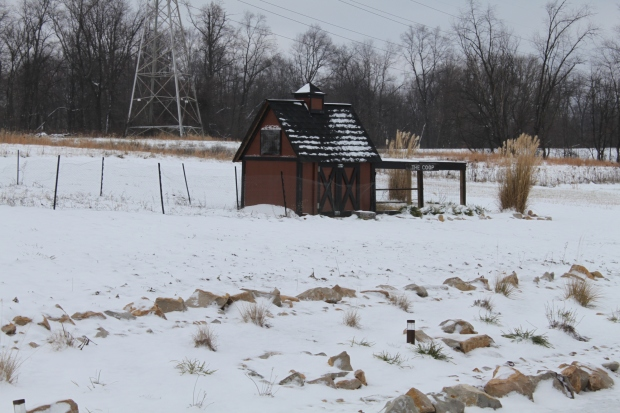 The coop is all closed up, and the windows are covered for the winter. The chickens want no part of the snow!