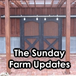 sunday farm updates