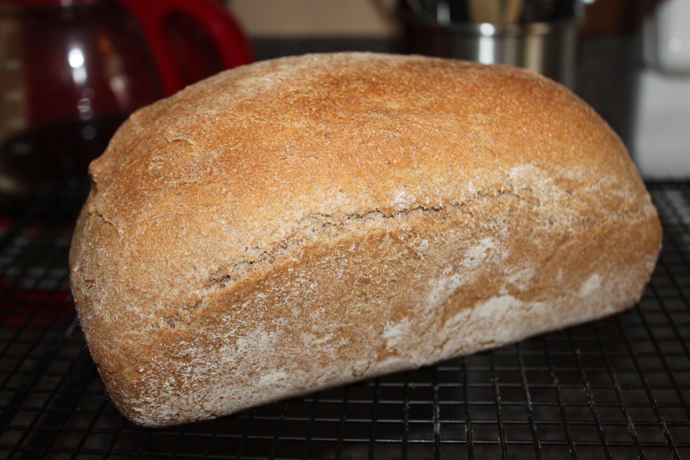100% Whole Grain Wheat Bread Recipe - Old World Garden Farms