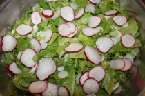 Early season crops like lettuce and radishes can go in the ground earlier in raised row beds