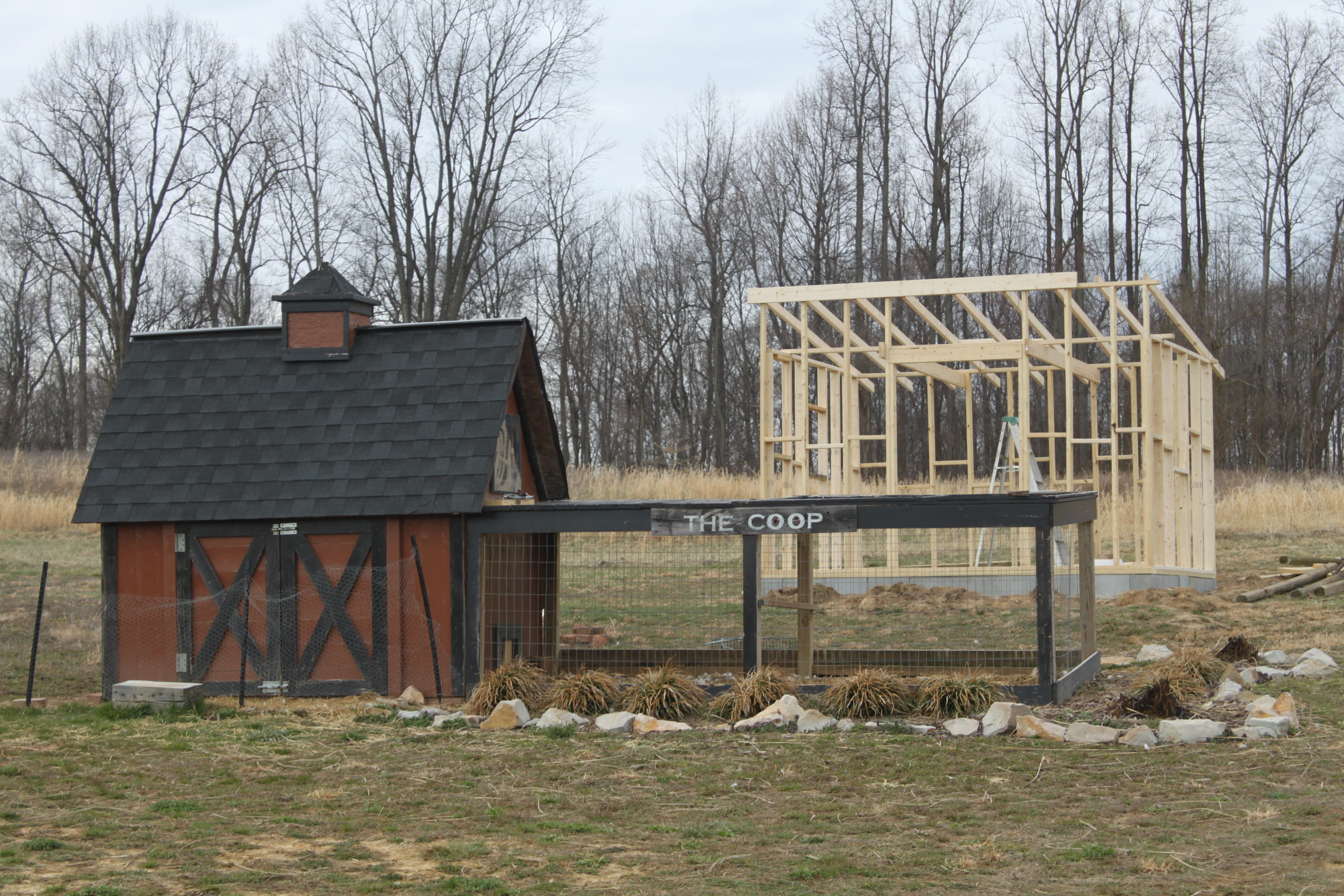 The new chicken coop rises and the farm comes to life for Old farm chicken coops