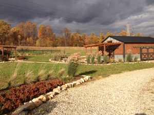 As the fall skies roll in - its time to start getting that garden cleaned up for the winter.