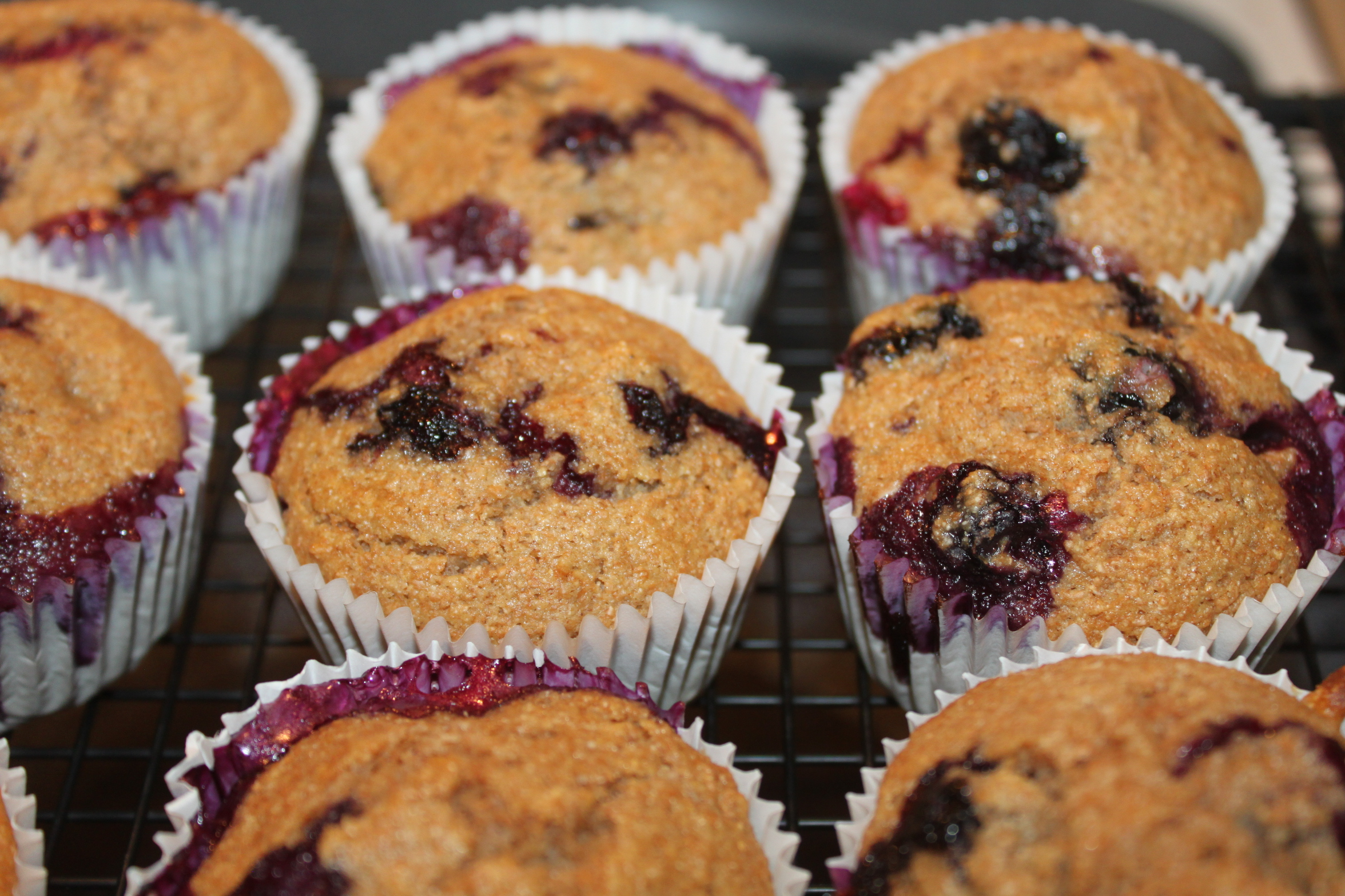 Whole Wheat Blueberry Muffin Recipe – Get Ready For Blueberry Season ...