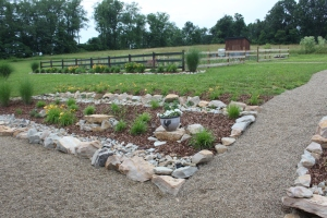 We will use the same pea gravel walkways we use around the farm in our main center garden aisle.