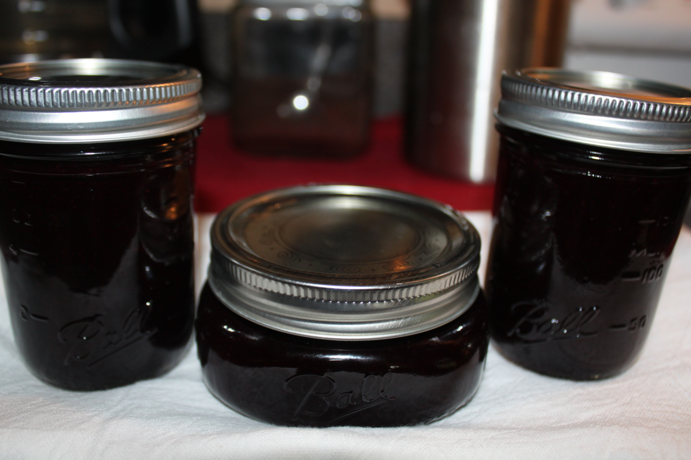 Blueberry Syrup Recipe Fresh or Canned-With A Sugar Free ...