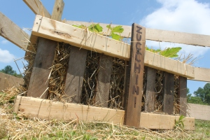 Our straw bale crate  garden made from old pallets