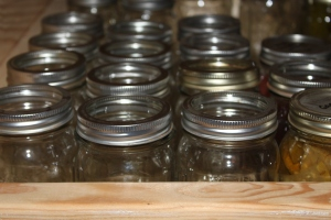 There are a lot of empty jars on the canning pantry shelves this time of year needing filled back up!