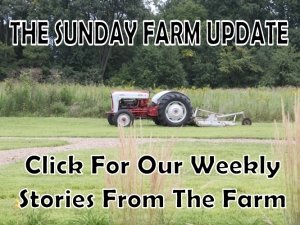 Our Weekly Farm Update Stories