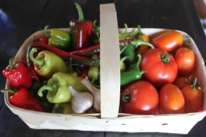 Peppers, Garlic and Tomatoes are excellent choices to save seeds from