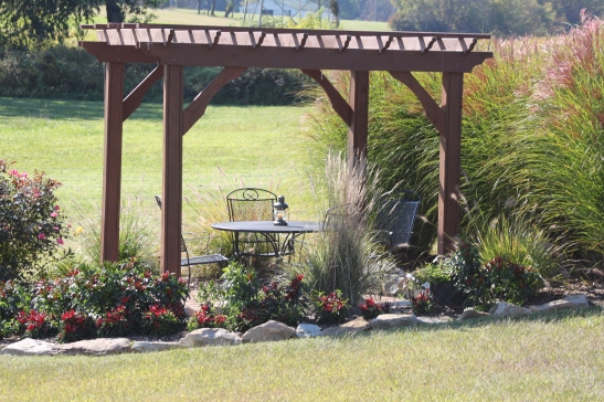 The upper pergola with the ornamental grasses and peppers in full fall bloom