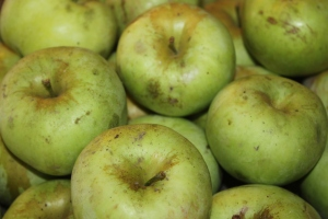 Northern Spy apples make a great pie apple because of they are tart and juicy --Don't forget seconds are perfect for apple pie filling!