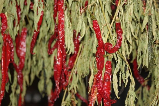 Here is a little winter color!  The cayenne peppers are drying nicely in the barn - hung from the rafters.