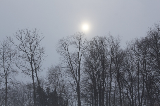 Late in the day - a ray of hope from the sun tries to break through the snow clouds