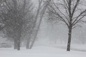 When snow like this starts to fall - you want your winter supplies at the ready!