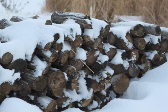 The wood piles are covered in thick snow.  We have used more wood in our fireplace this year than we have the last three combined!