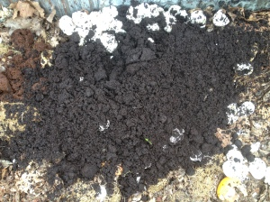 Coffee grounds are a great source to add to piles- providing nitrogin