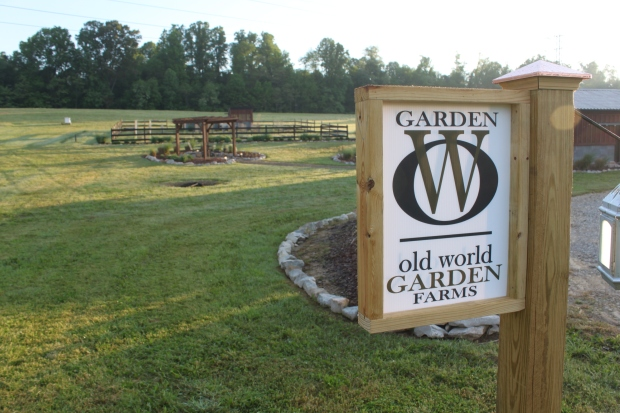 We made these signs from 6 x 6 posts and left over 2x4 lumber - they line the driveway and hold planters on the other side.