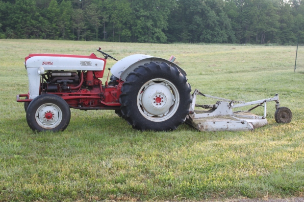 Old Willie sits  in the grass resting after a mow.  He still runs like a top after 60+ years