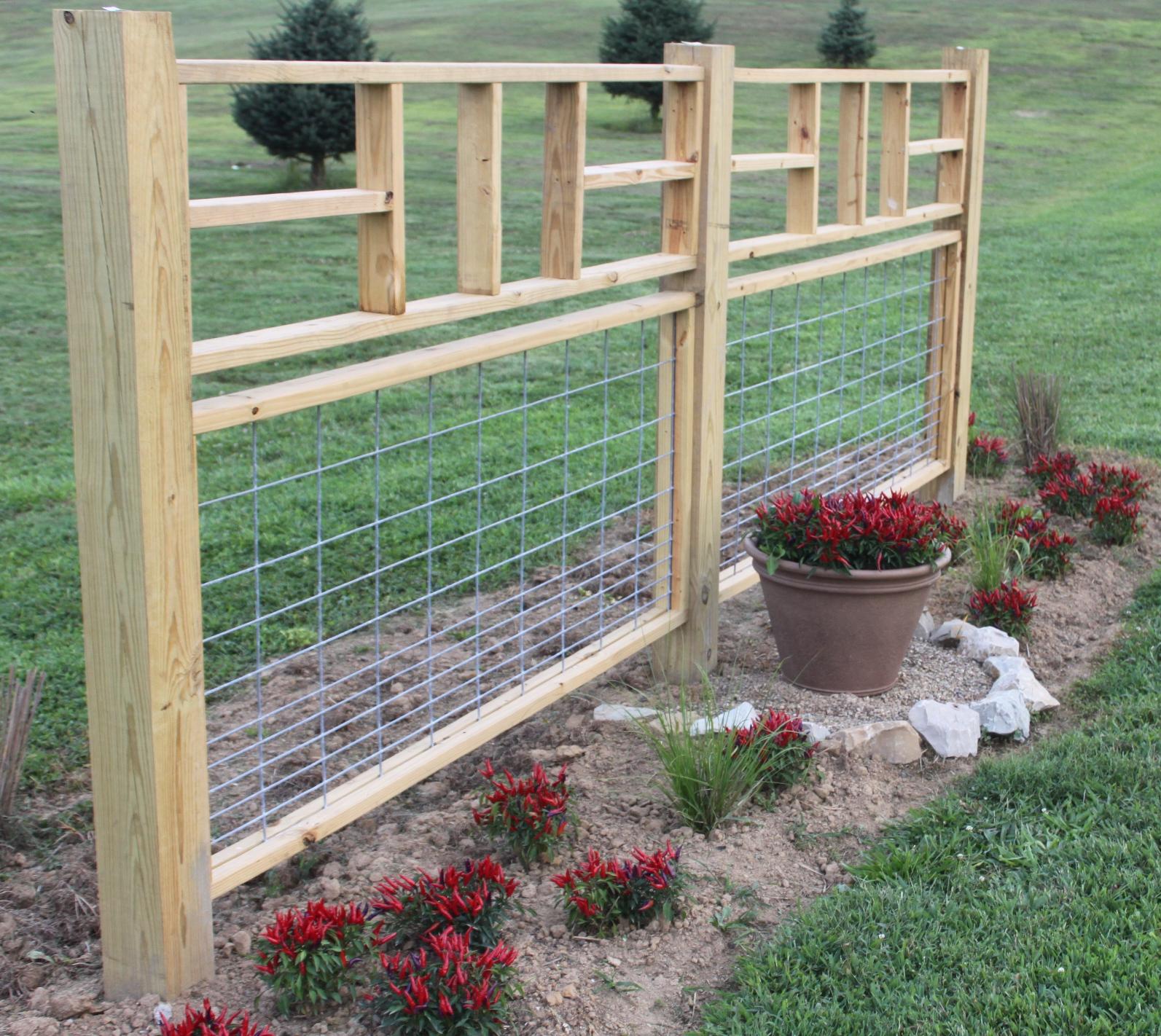 The garden re design fences walkways growing rows