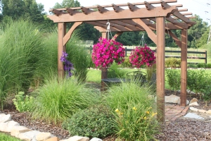 The very first pergola we ever built at the farm