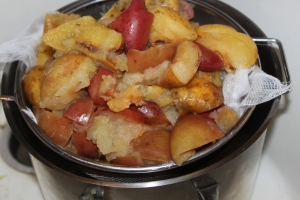 After the apples have been boiled with the water, use a sieve or drain with cheesecloth