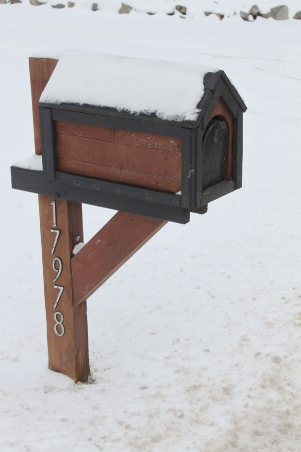 The Pallet Mail Box (1)