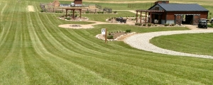 "Our lawn at the farm is far from ""weed free"" - but we are proud that it's ""chemical free!"""