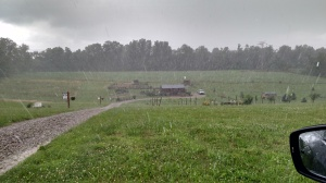 A recent downpour at the farm - which has been all to common lately!